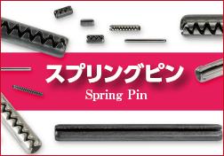 spring_pin_b2